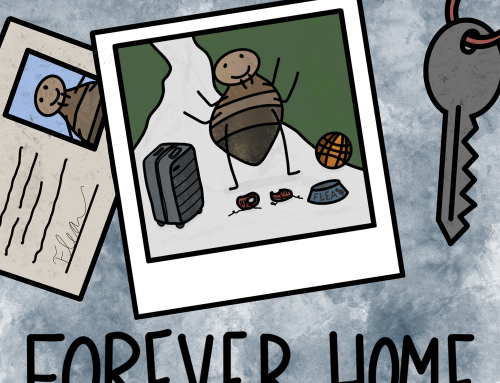 188-The Flea: Forever Home (ad-free)